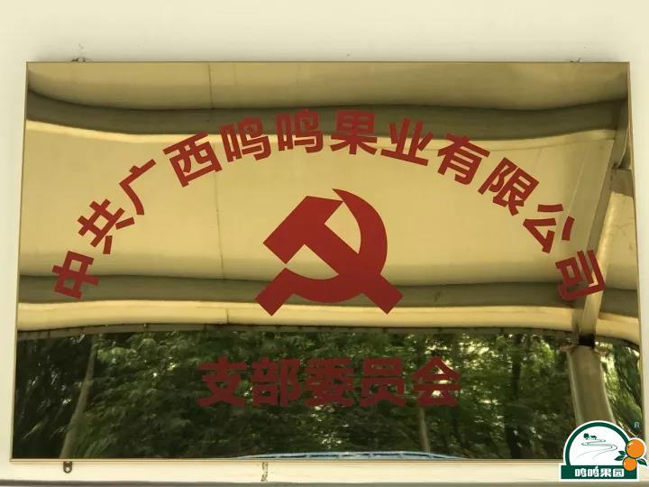 鸣鸣果园党支部挂牌成立