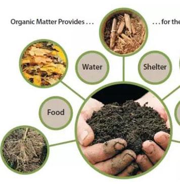 土壤有机质增加1%,需要施多少有机肥?