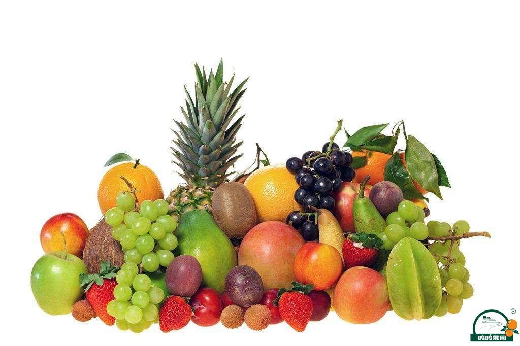 水果种类大全