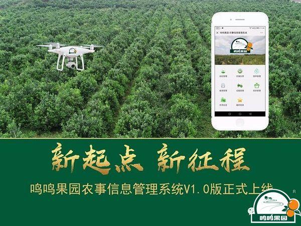 鸣鸣果园农事信息管理系统V1.0版正式上线