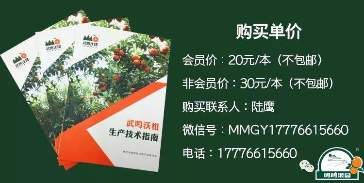 武鸣home 88必发官网技术指南