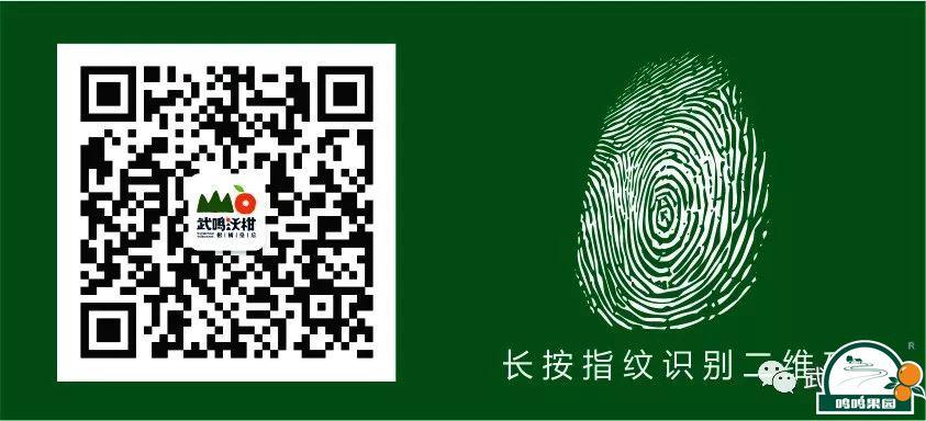 武鸣home 88必发官网微信公众号